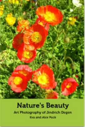 Nature's Beauty cover
